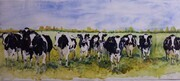 Curious Cows on Terraskin paper